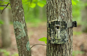 what makes a great game camera