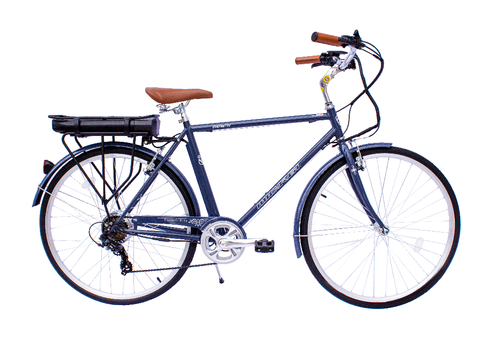 Holland Electric Bicycle