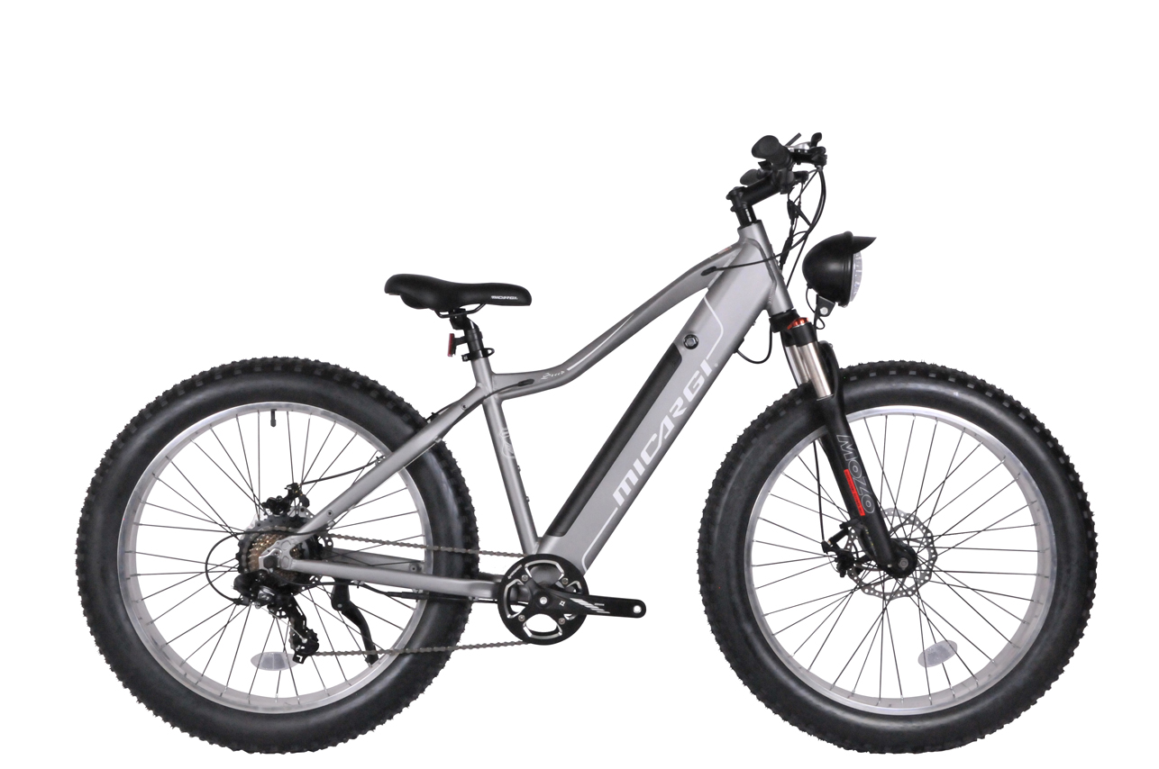 Micargi Steed Electric MTB Mountain Bike