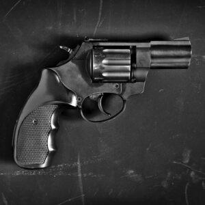 Firearms Maintenance: Pistols and Revolvers Gun Shop Boca