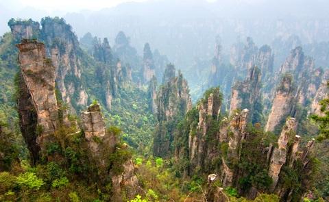 stone-forest-china-zhangjiajie