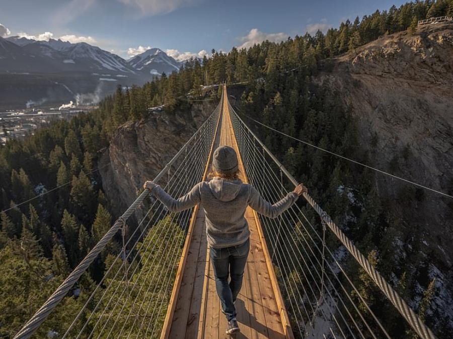 Golden Skybridge by Pursuit