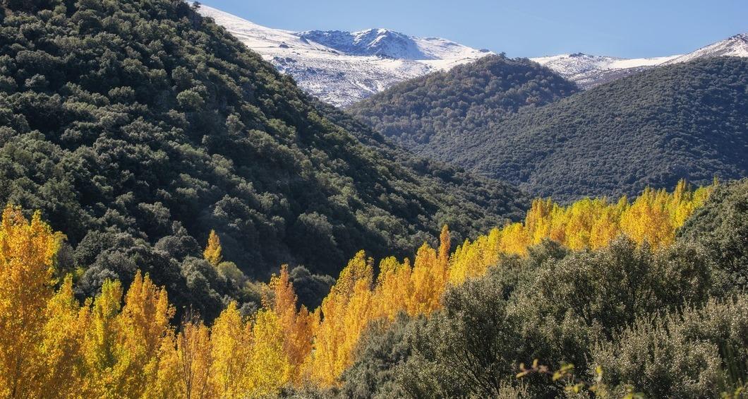 Sierras in Autumn