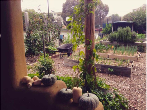 Climate Smart Food: Gardening in a Changing Climate – Part 1