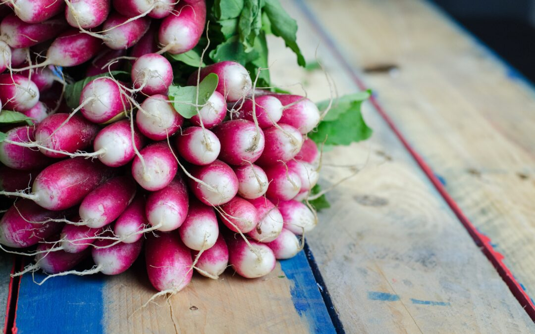 Lou's winter radish recipes