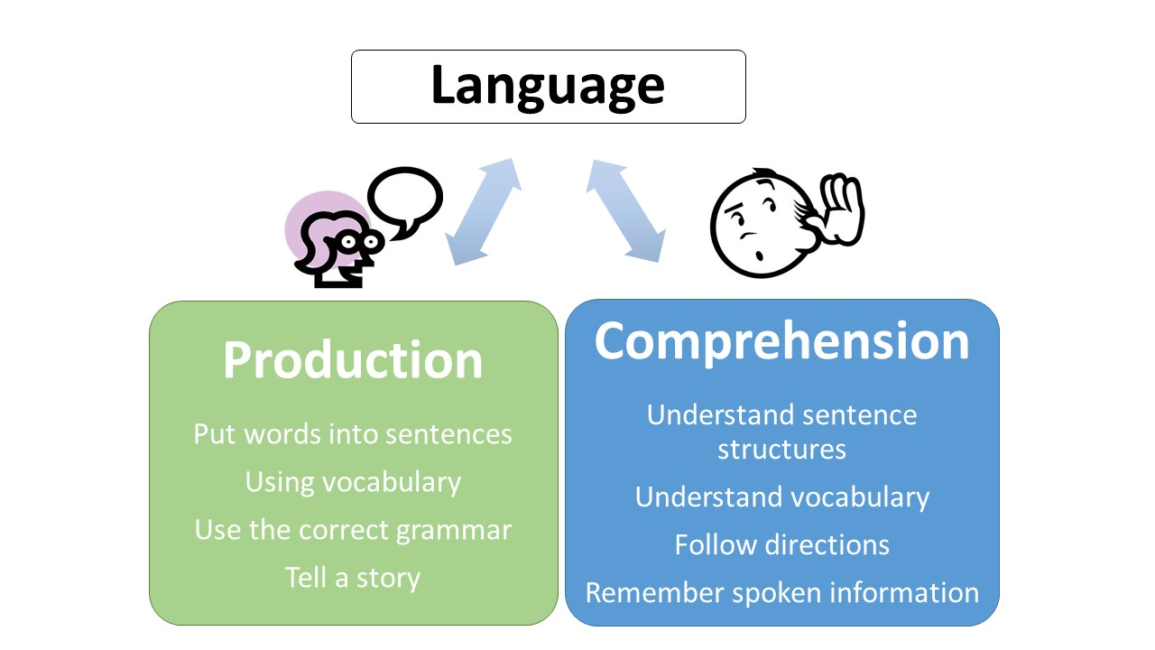 Learn and Grow Therapy teach children the importance of language comprehension and production.