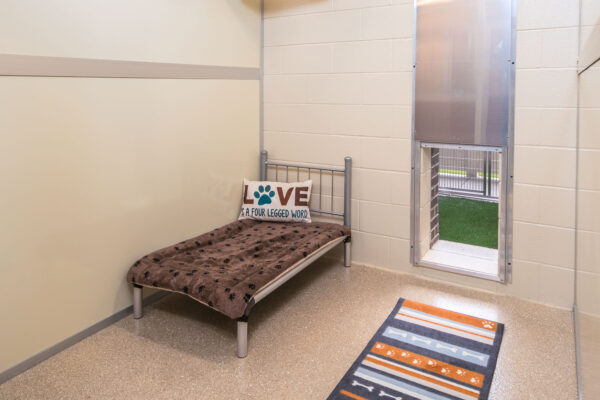 Solid Walls inside Suites