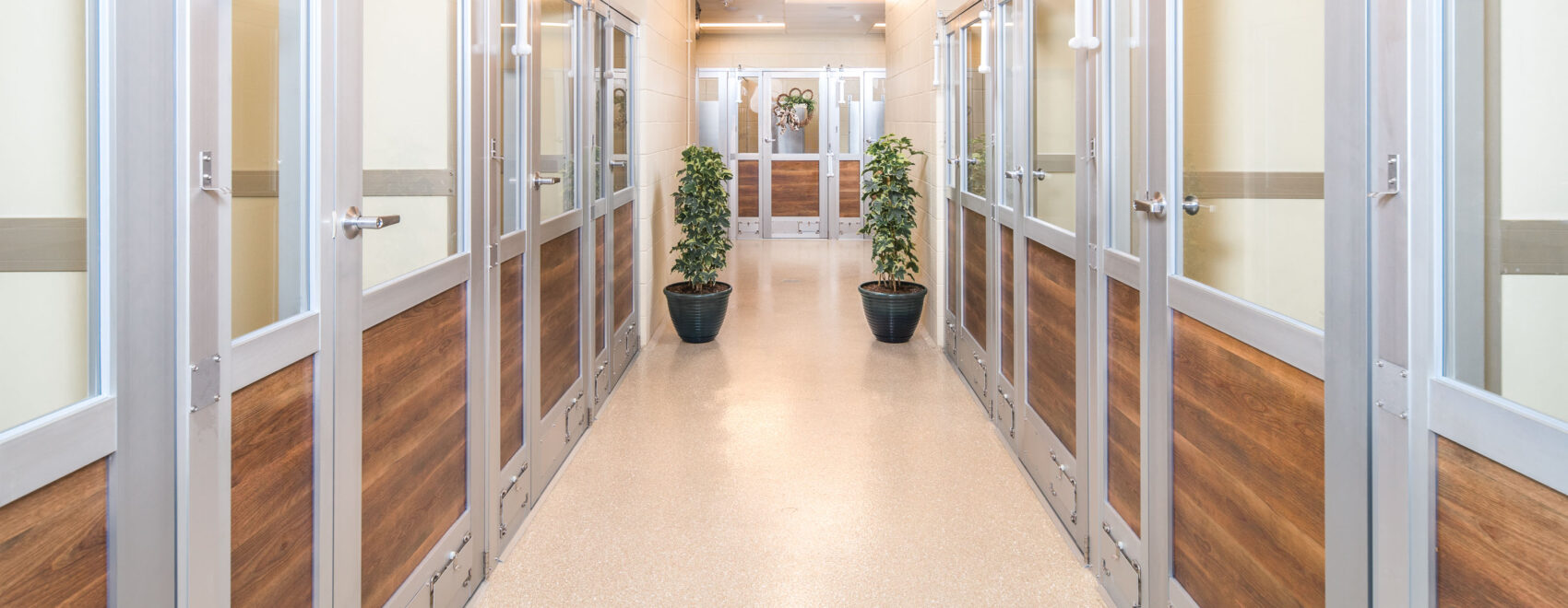 Dog Suite Hallway