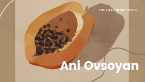 Ani Ovsoyan