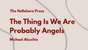 The Thing Is We Are Probably Angels
