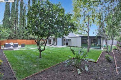 Long shoot-Backyard