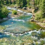 Best Food in Montana's Yellowstone Country