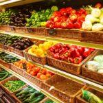 Probiotics For A Happy Travel Tummy