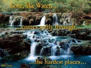 Love & Water 201