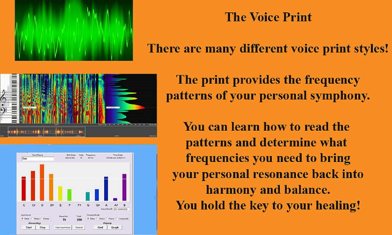 Voice Print Processes 20151005