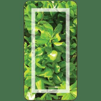 Kahuna Grip Tropic Green Bathmat