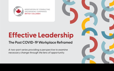 Effective Leadership: The Post COVID-19 Workplace Reframed