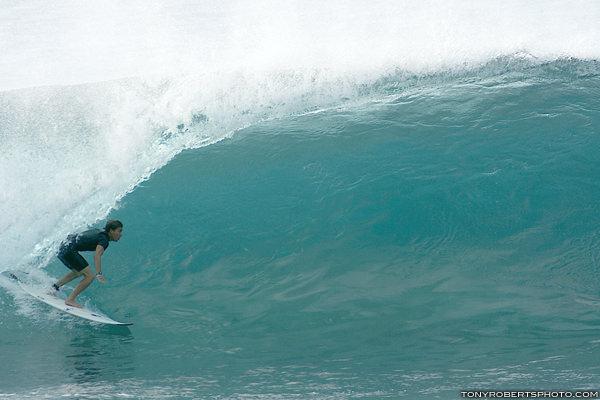 lozano en hawaii x tony roberts2176