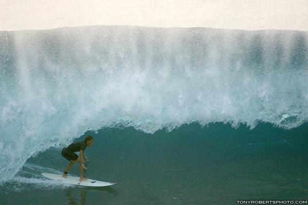 lozano en hawaii x tony roberts2178
