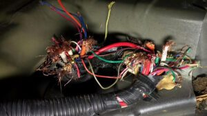 Mice, squirrels, and all manner of vermin have the tendency to gnaw on electrical wires.