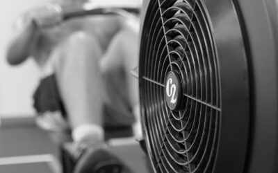 Choosing your Fitness Path at Saltwater Athletics