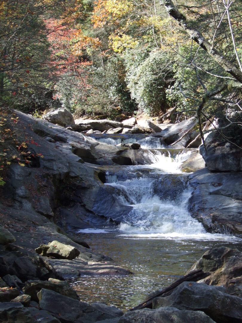 A freshwater stream