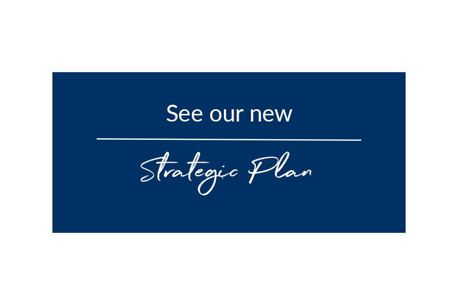 new-strategic-plan-graphic-002