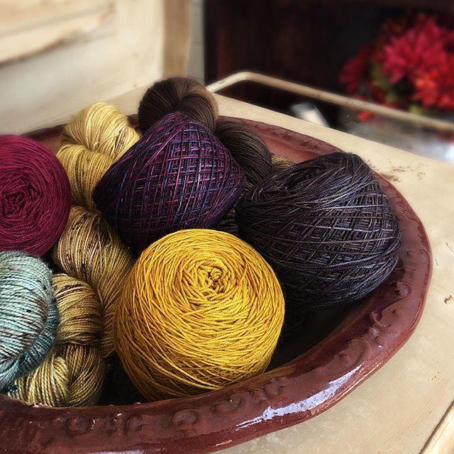 Papillon Knittery