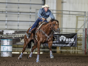 TS Famously Shaken 2013 mare out of Fame For Pamela Owned by Natalie Leske, Ridden by Luke Dunning Futurity Money-earner of 30K to date, 2018 Greg Olsen Futurity Champion, Clocking 16.9 on standard