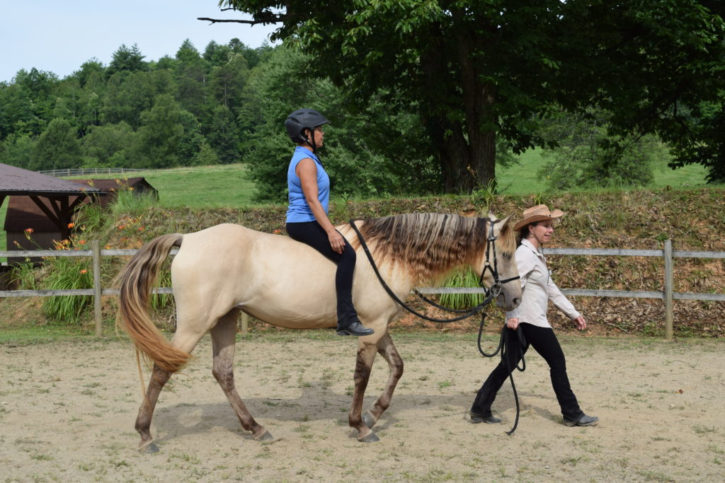 Body Mind Equine Being Led