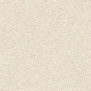 Tackboard Color Cream(B321-15)