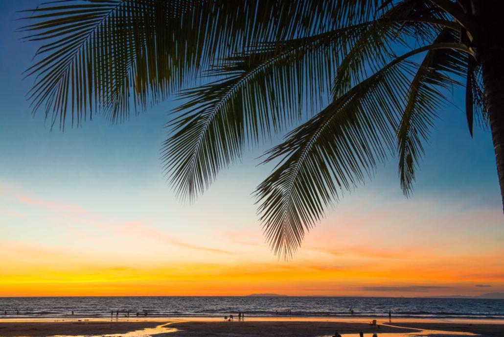 surfing sunset beach