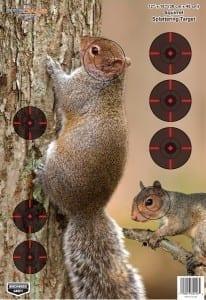 Birchwood Casey Pregame Squirrel Target