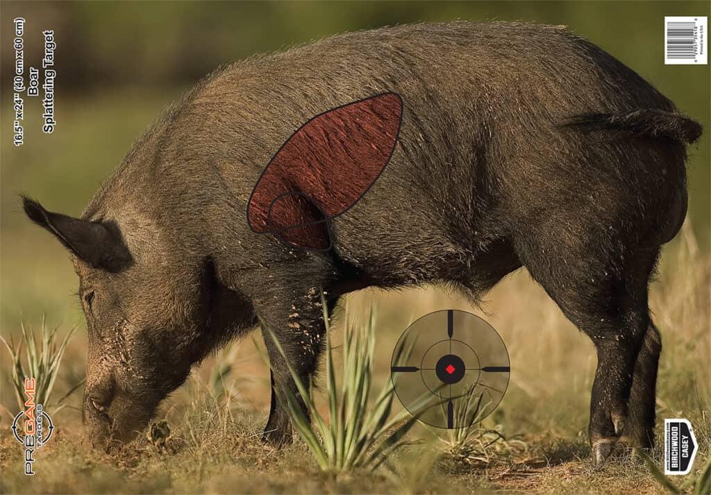 Birchwood Casey Pregame Boar Target
