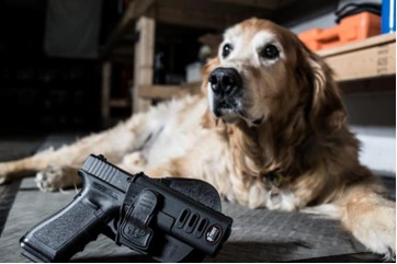 Fobus Holster and ECAD Service Dog