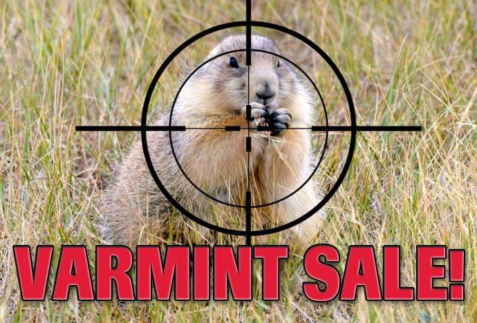 American Gunsmithing Institute Spring Sale