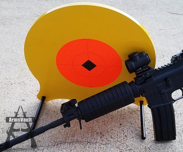 Birchwood Casey Mule Kick Target with Windham Weaponry SRC