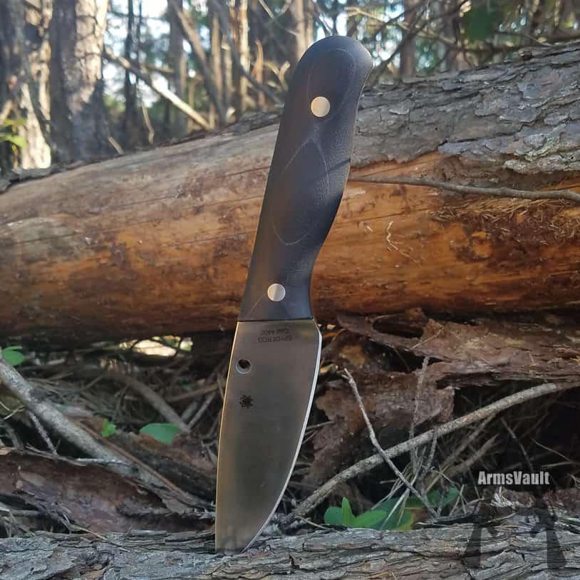 Spyderco Serrata Fixed-Blade