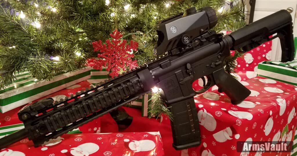 Smith and Wesson MP15T with SIG BRAVO4 Battle Sight
