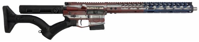 DS-15 Signature Series Freedom Flag 556 Featureless Rifle