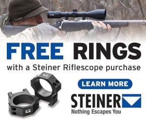 Steiner Free Rings