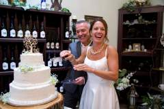 Wedding Cake Cutting 3