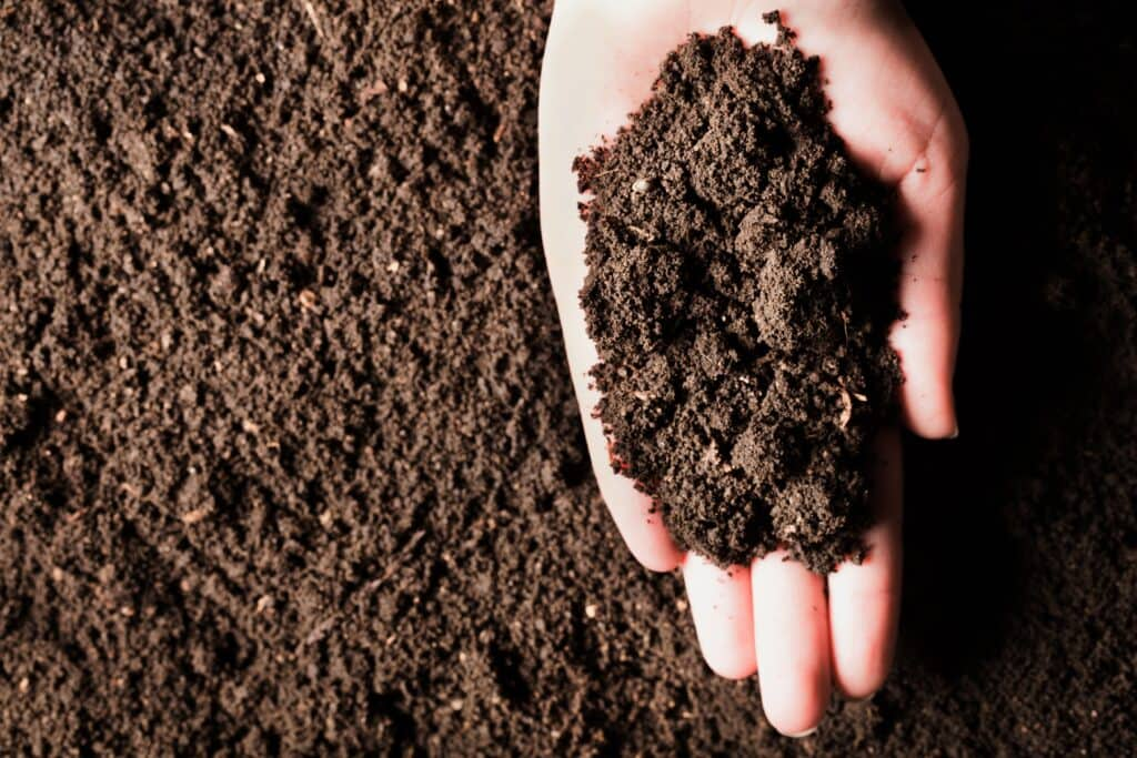 Finished compost.  why isn't your compost breaking down like this?