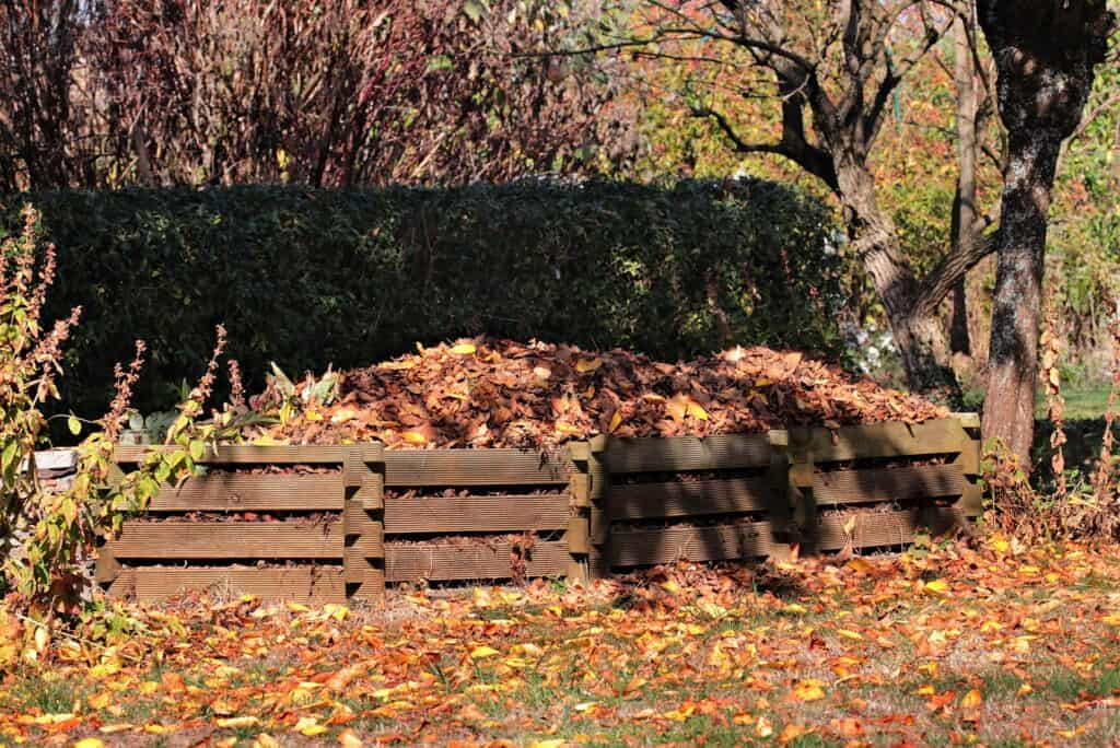 composting in bear country doesn't have to be complex
