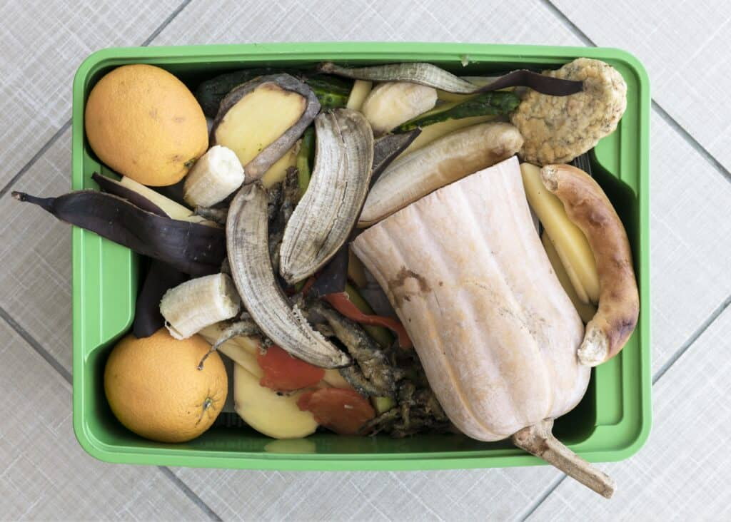 where to compost in an apartment