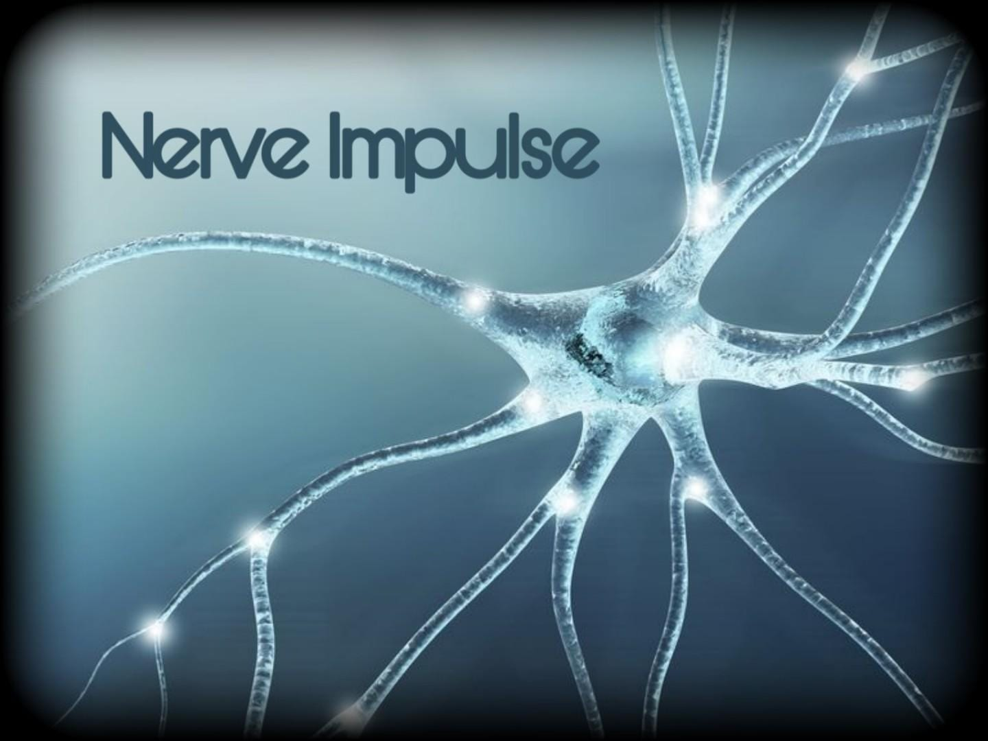 Nerve Impulse Mandan