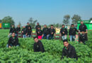 Prosus Ventures leads $30 million investment in Indian agritech startup DeHaat – TechCrunch