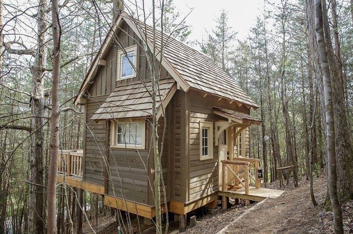 Sophie's Roost Treehouse