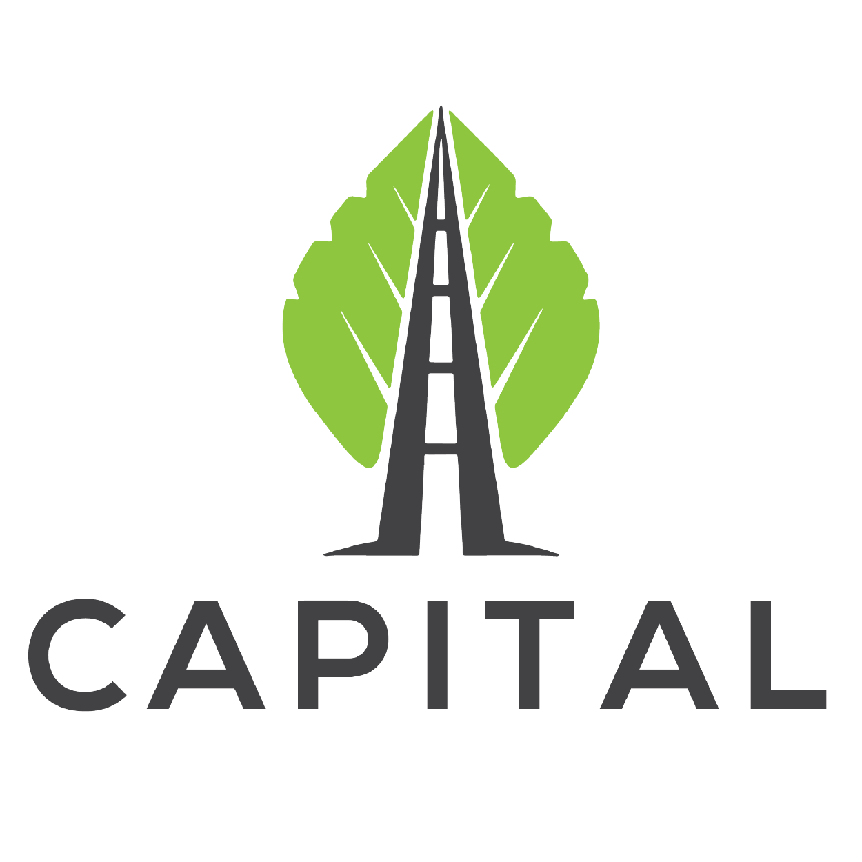 Capital Consulting Solutions