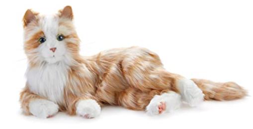 JOY FOR ALL - Orange Tabby Cat